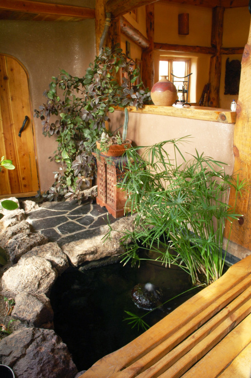 dojo indoor pond and bridge