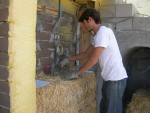 straw bale and adobe